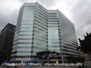Features of a Private Limited Liability Company