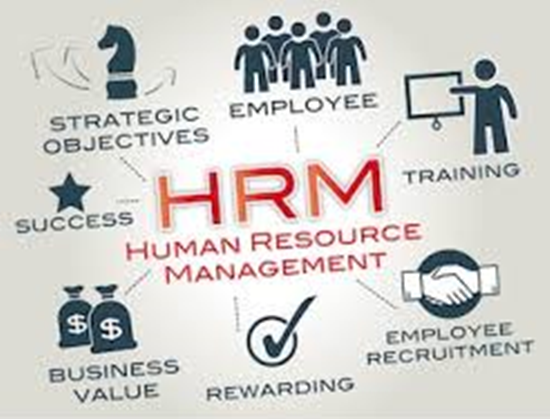 BCom Human Resource Management