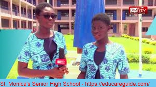 Elective Subjects In Home Economics At SHS - Here Are the Detailed List