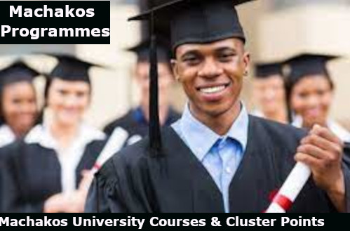 machakos courses and cluster points