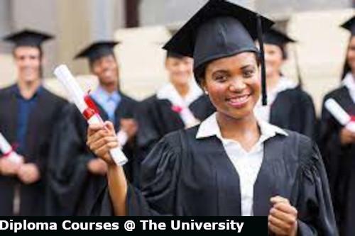 chuka diploma courses and